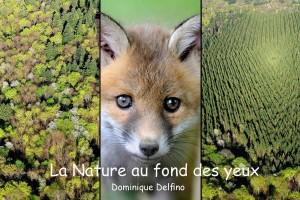 La nature au fond des yeux